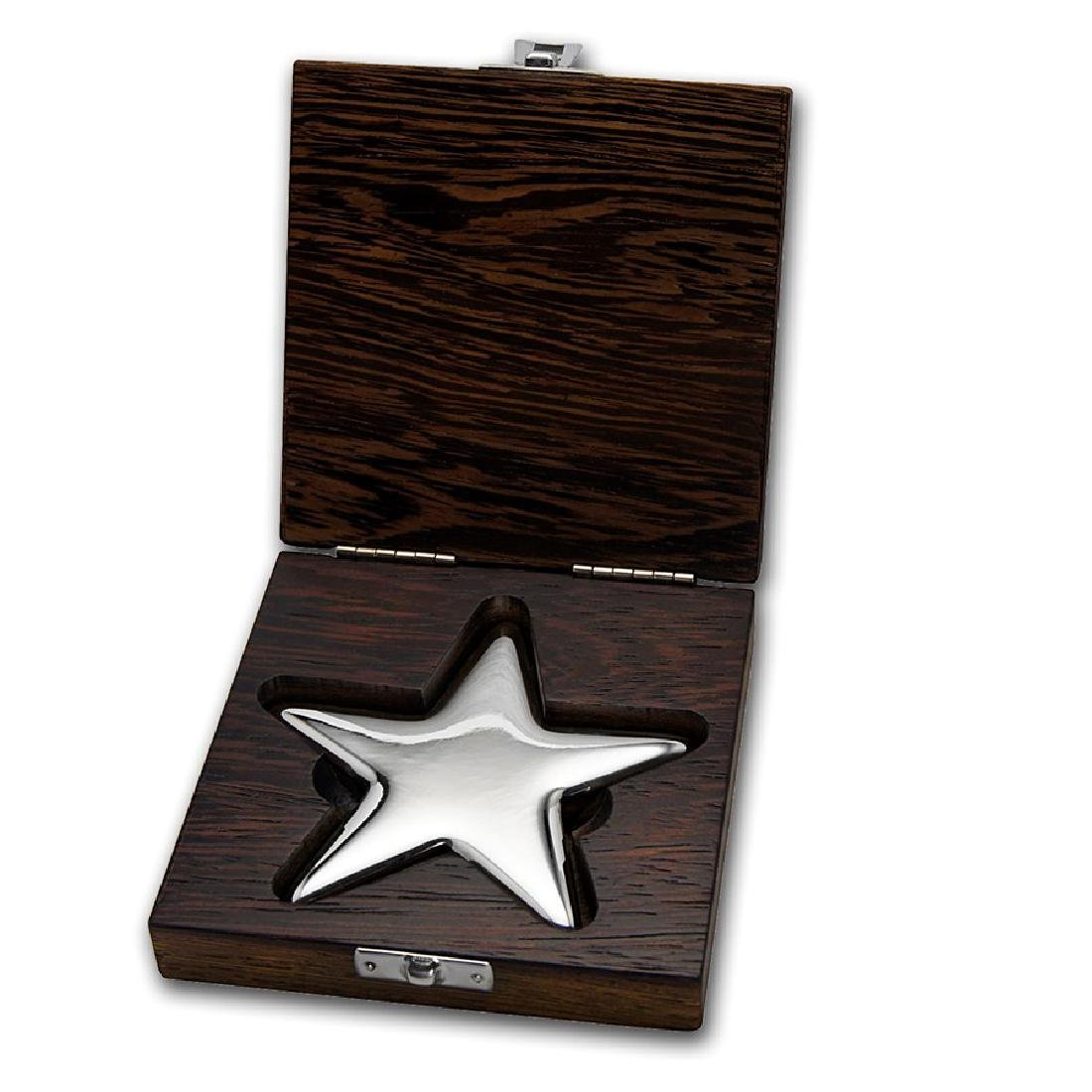 Genuine 500 gram Fine Silver Star Bar - Geiger