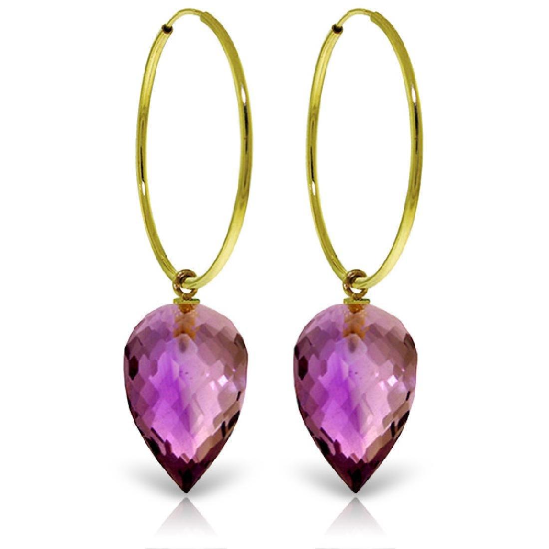 Genuine 19 ctw Amethyst Earrings Jewelry 14KT Yellow