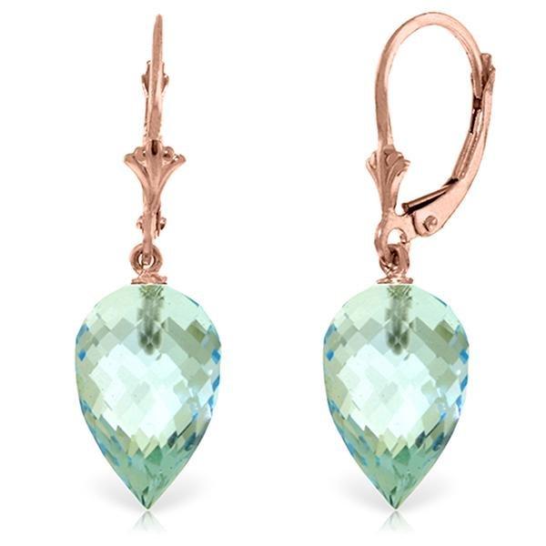 Genuine 22.5 ctw Blue Topaz Earrings Jewelry 14KT Rose