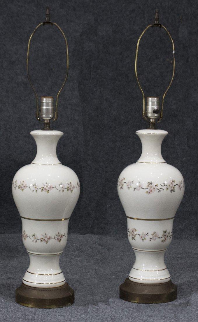 Pair FINE PORCELAIN LAMPS Floral Decoration