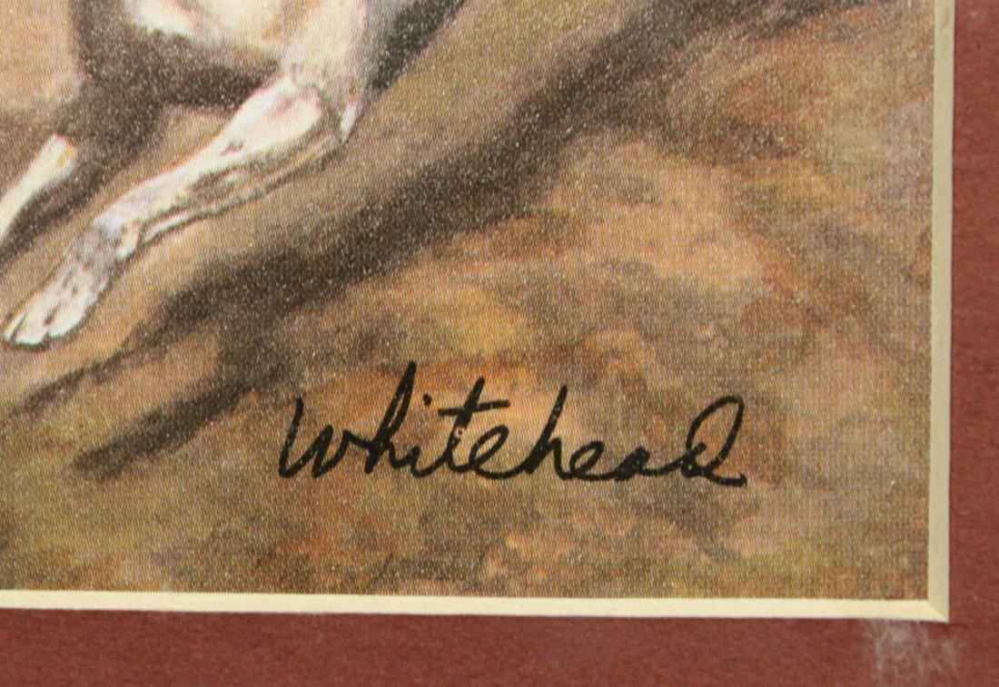 WHITEHEAD, English Hunt Scene Framed - 3