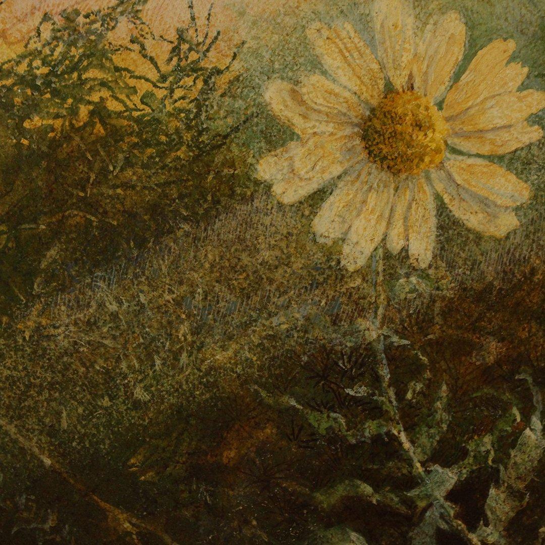 Robert Duncan, Oil on board, Daisy Flower in Landscape - 2