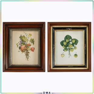 2 Antique Botanical Prints in Deep Walnut Frames