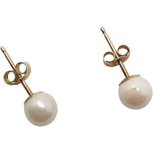 10 K Yellow Gold Fresh Water Pearl Stud Earrings