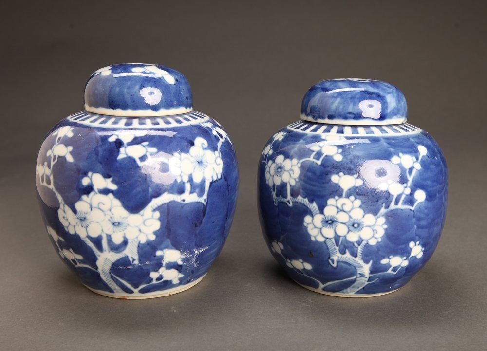 Pair of Antique Chinese Blue & White Prunus Jars