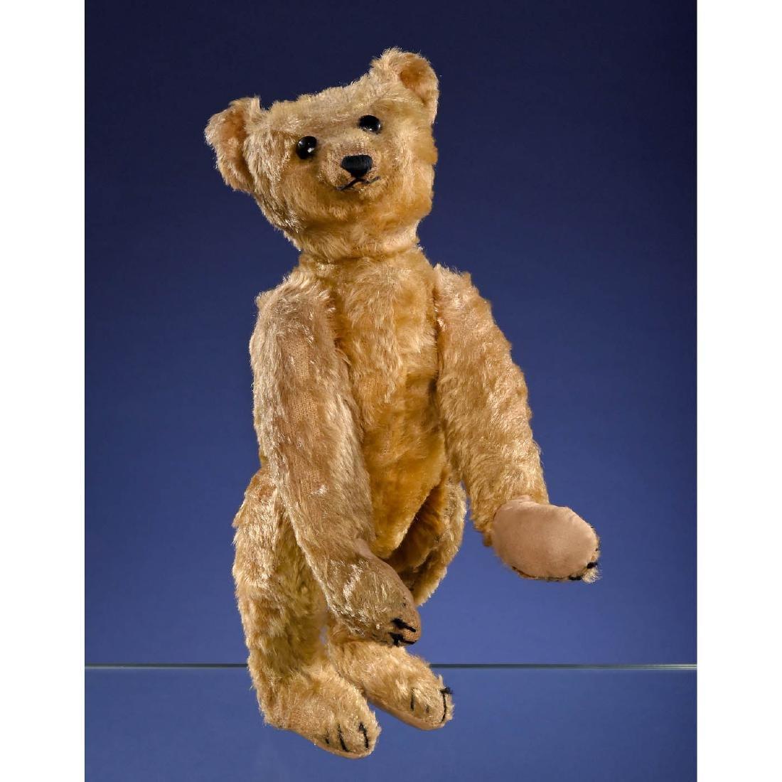 Rare Steiff PB28 Rod Bear, c. 1903/1904 - 2