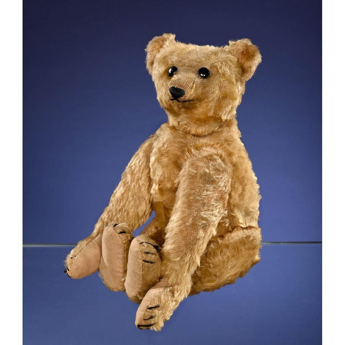Rare Steiff PB28 Rod Bear, c. 1903/1904 - 3