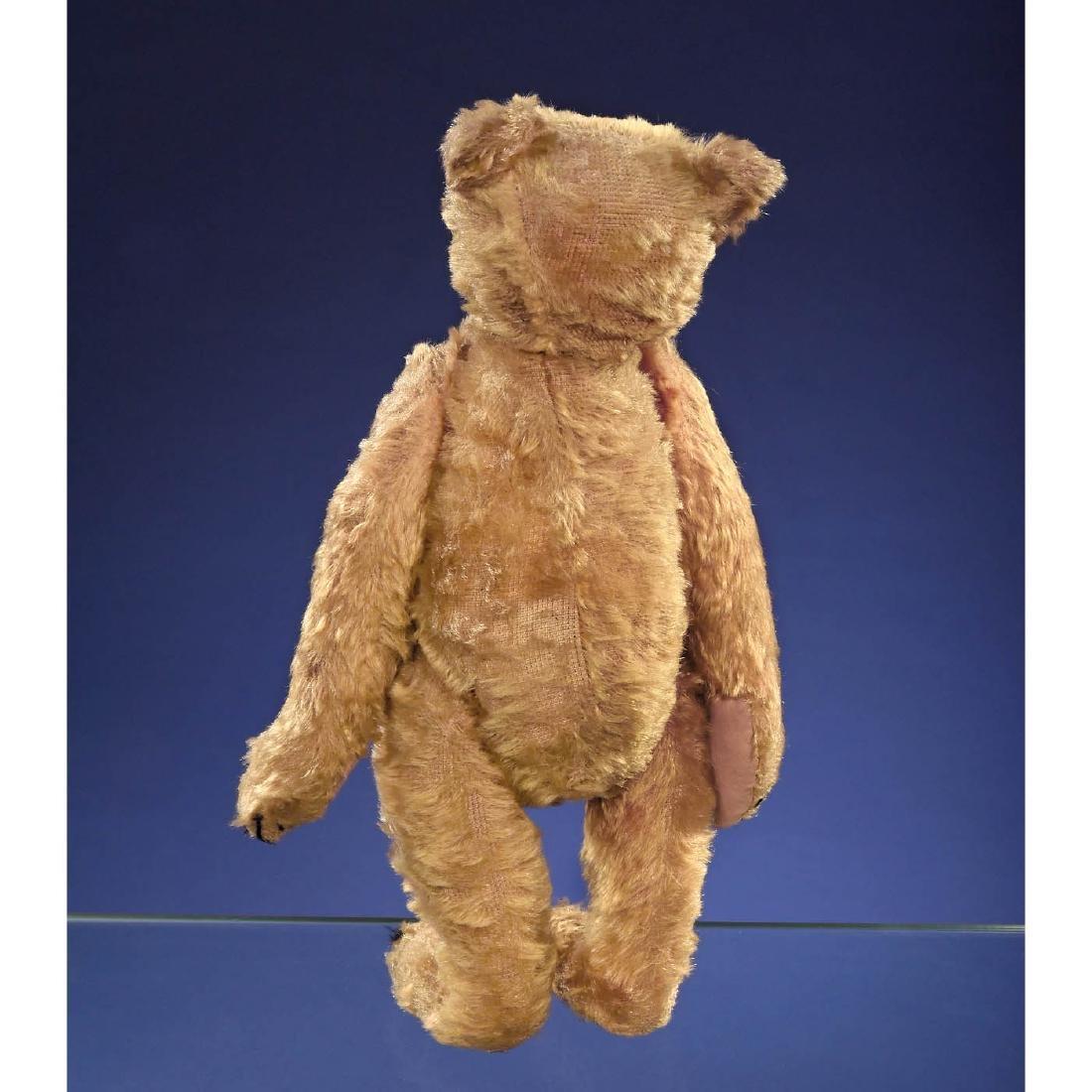 Rare Steiff PB28 Rod Bear, c. 1903/1904 - 7
