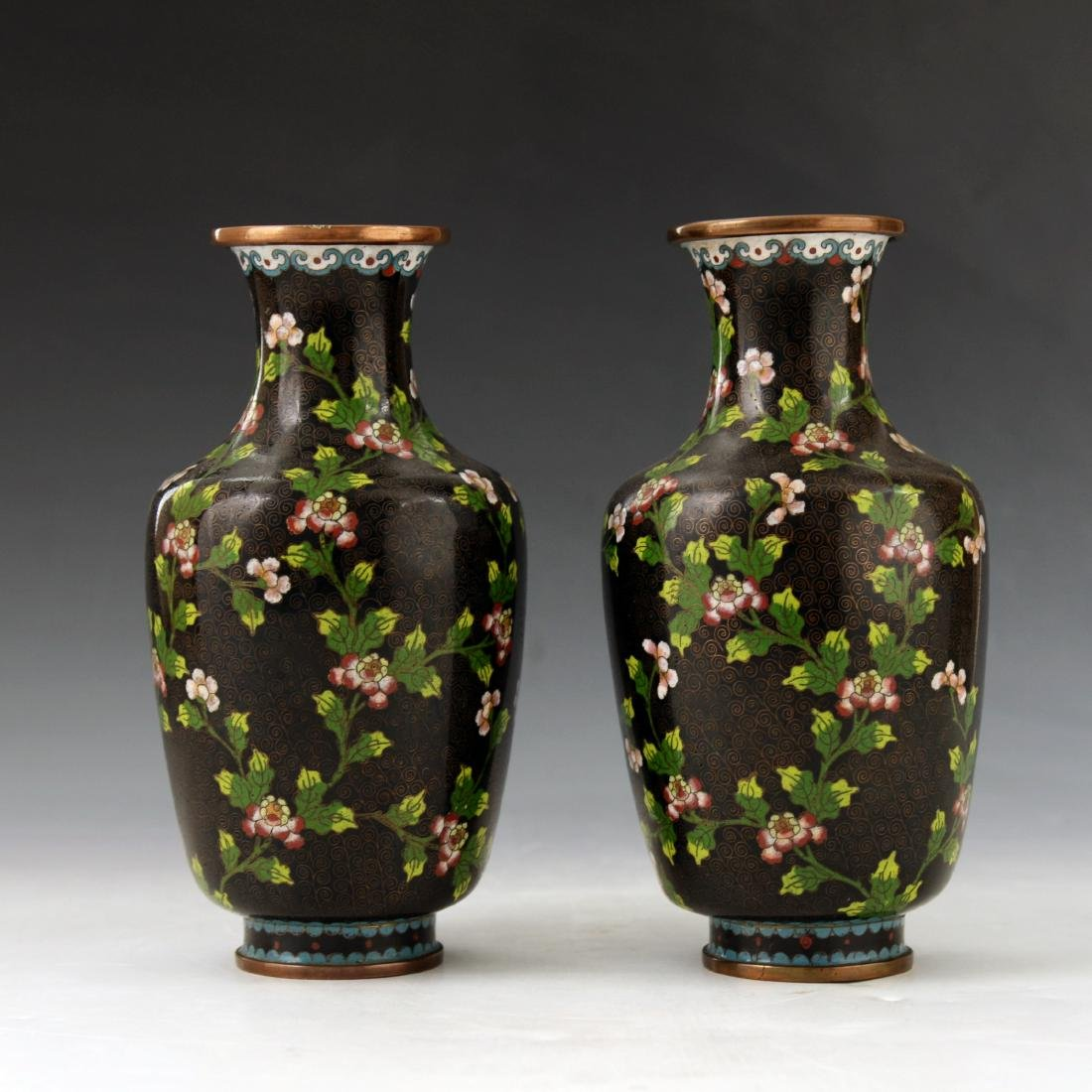 A Pair of Chinese Cloisonne Vase