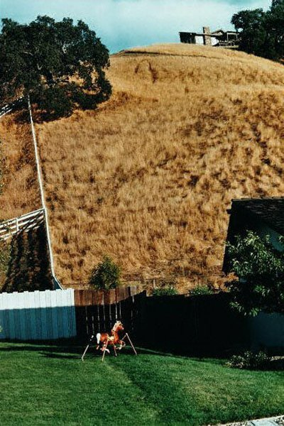 116: Bill Owens: Hillside with Toy Horse 1981