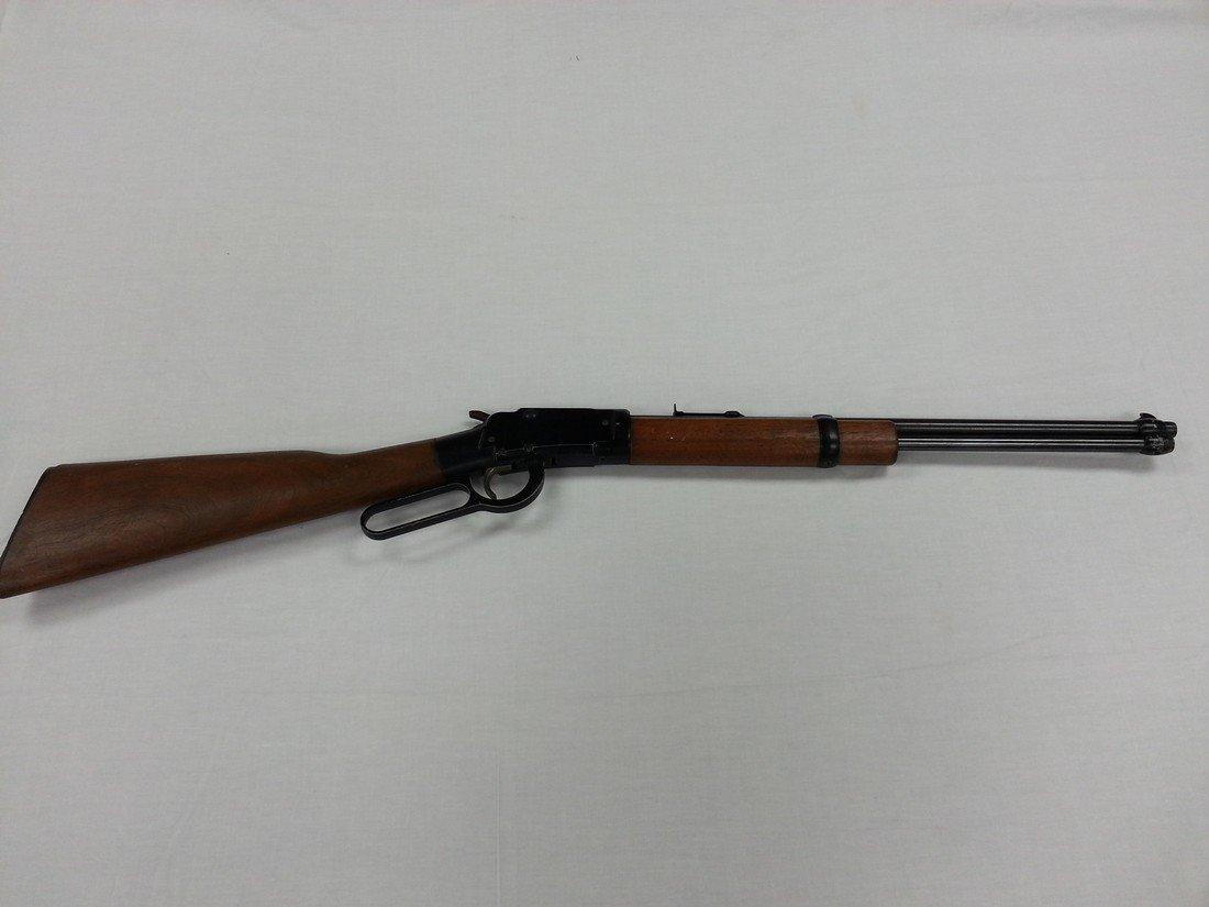 .22 Caliber Gun