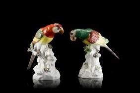 A pair of Meissen porcelain parrots (losses)