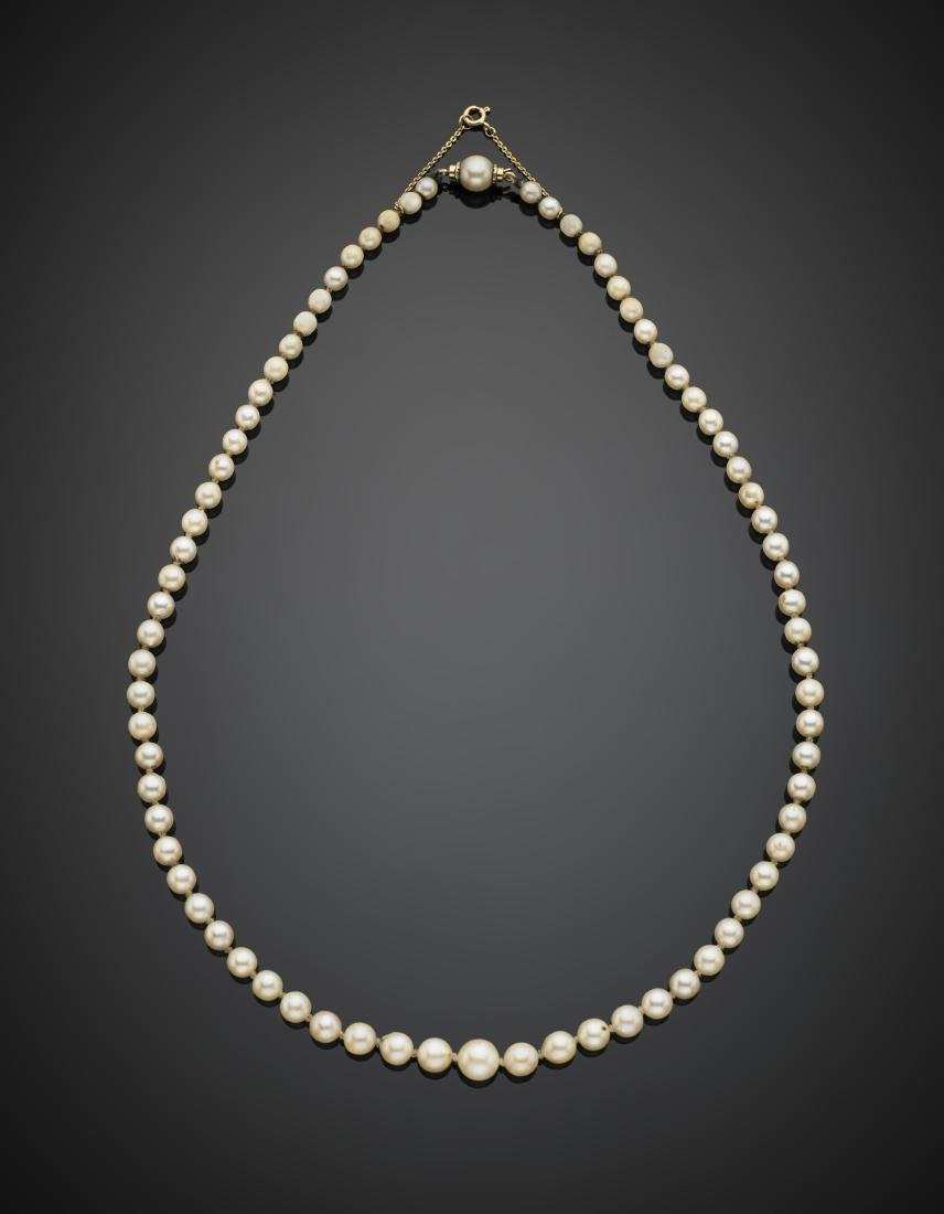 White cream hued cultured pearl graduated necklace with