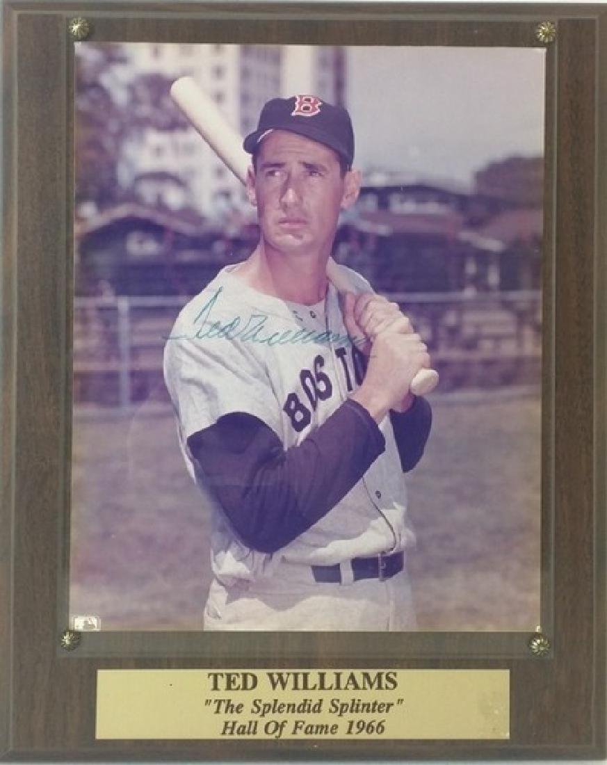 """Ted Williams """"The Splendid Spliter"""""""