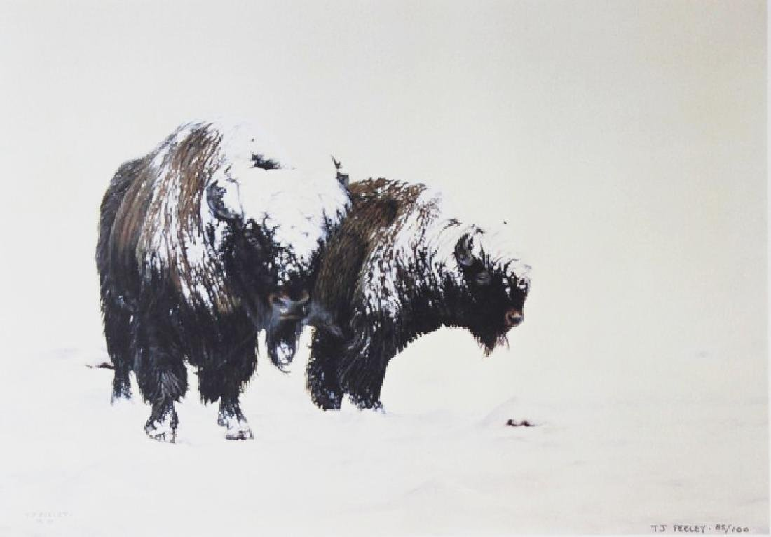 Hand Signed Ltd Ed Lithograph T.J. Feely