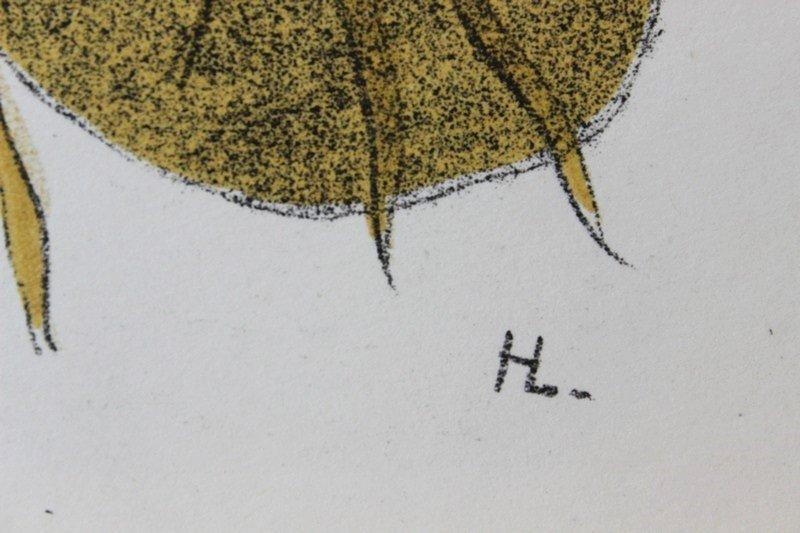 Nu a la Cithare by Henri Laurens - 3