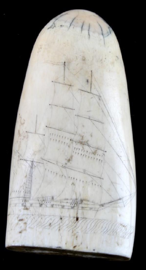 ANTIQUE 19TH CENT. WHALE SCRIMSHAW EROTICA & SHIP - 3