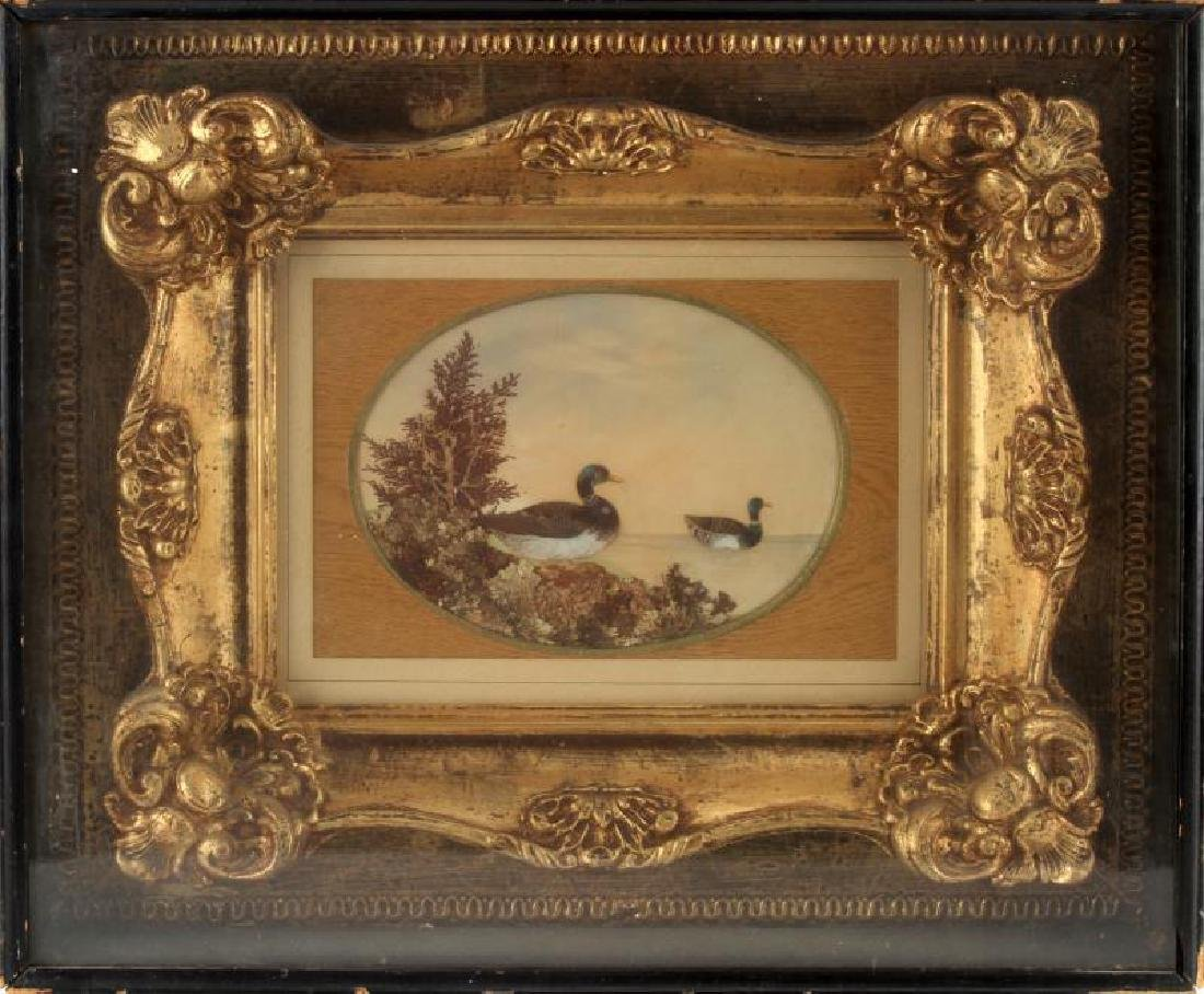 ANTIQUE SHADOW BOX MALLARD DUCK ART W FEATHERS