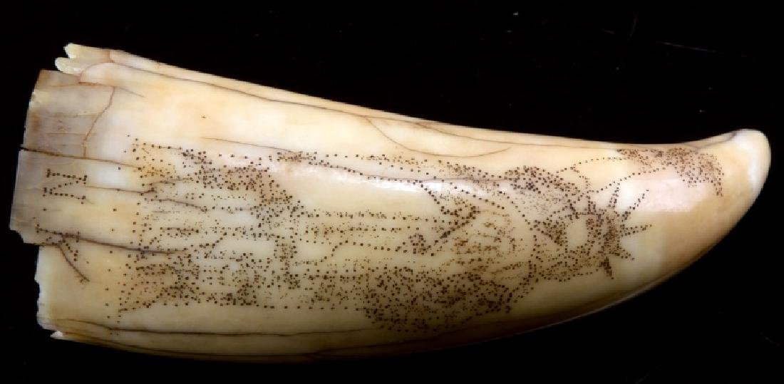 ANTIQUE 19TH CENTURY WHALE TOOTH SCRIMSHAW LIBERTY