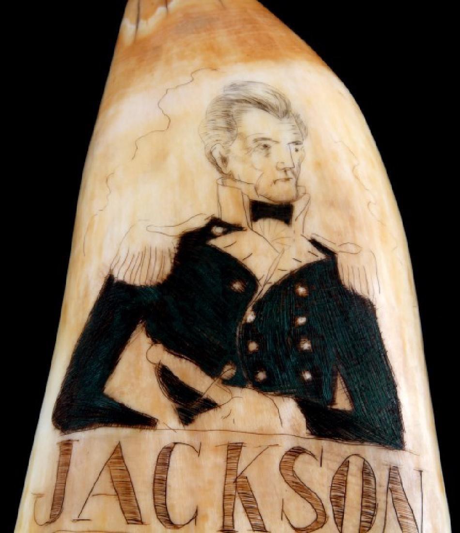 ANTIQUE WHALE TOOTH SCRIMSHAW JACKSON OVERTON - 2