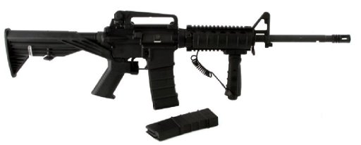 BUSHMASTER AR15 W BUMP FIRE STOCK LASER GRIP MAGS