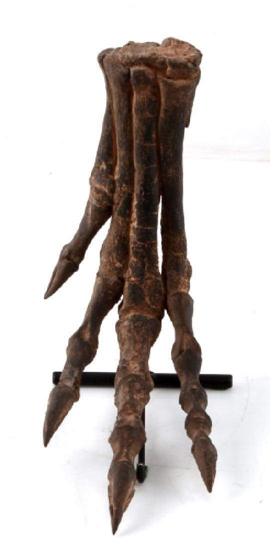 RESIN REPLICA DINOSAUR OTHNIELIA HIND FOOT