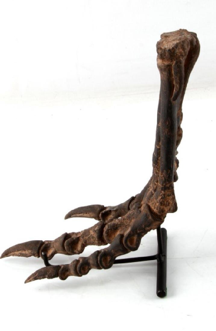 RESIN REPLICA DINOSAUR OTHNIELIA HIND FOOT - 4