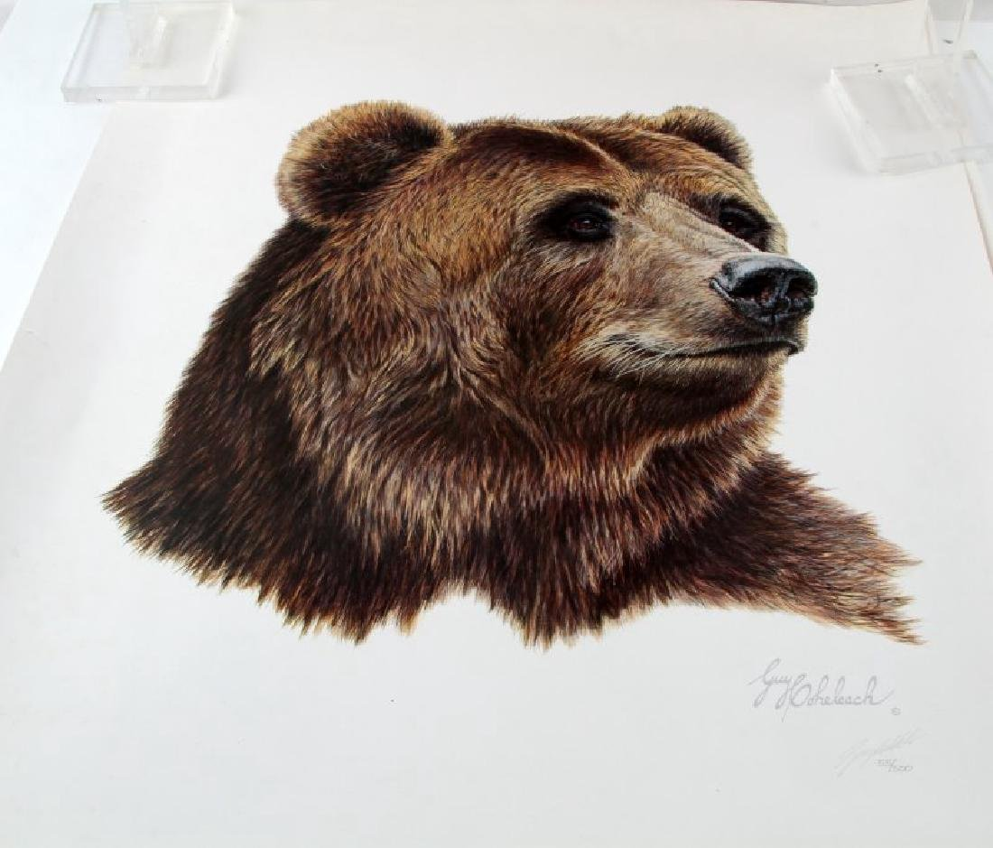 2 Guy Goheleach Numbered Ltd Ed Brown Bear Prints