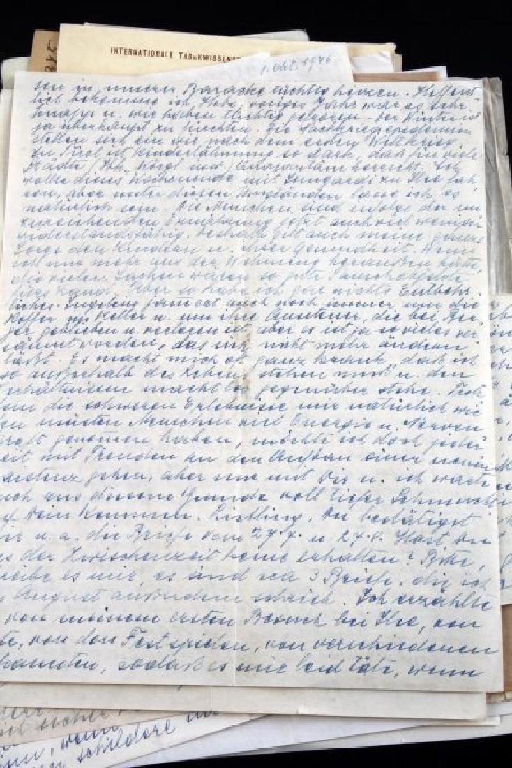 DR. HERMANN SENKOWSKY SS OBERFUHRER DOCUMENTS - 3