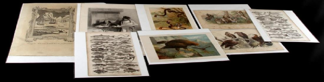 ASSORTED VINTAGE LITHOGRAPH AND ETCHINGS LOT