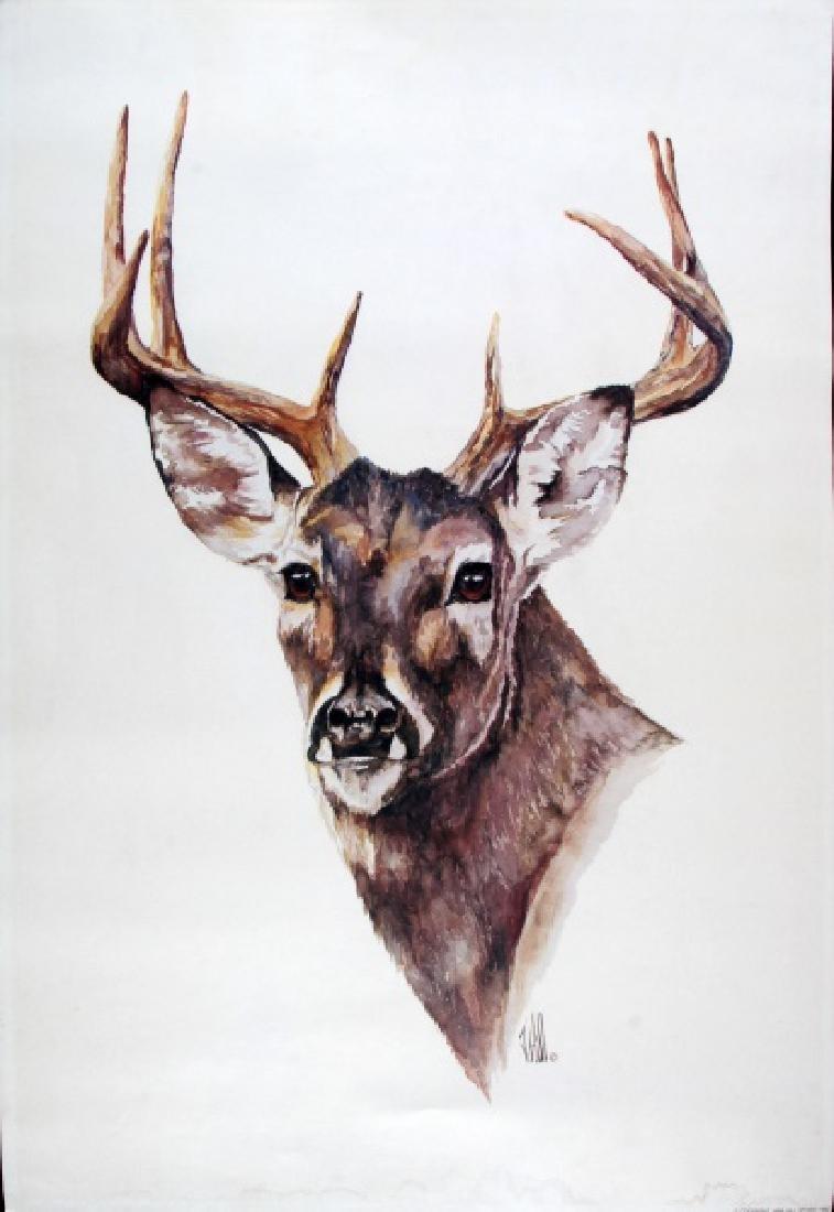 1982 HILL DEER WILDLIFE WATERCOLOR ART PRINT