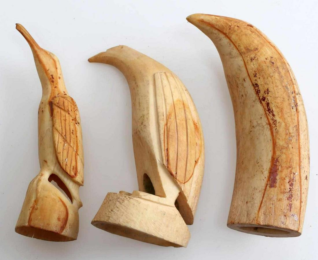3 ANTIQUE ORCA WHALE TOOTH SCRIMSHAW LOT