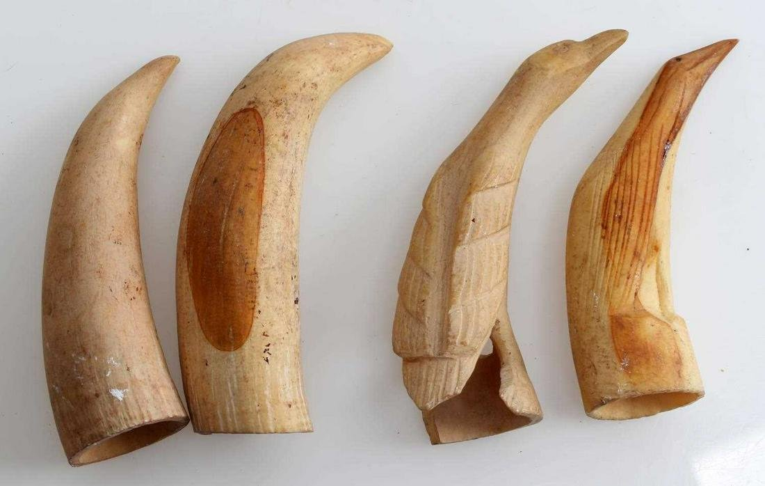 4 ANTIQUE ORCA WHALE TOOTH SCRIMSHAW LOT
