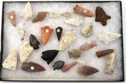 ARROWHEAD COLLECTION NORTH FLORIDA  SOUTH GEORG