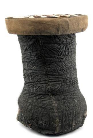 ELEPHANT'S FOOT STOOL WITH ZEBRA SKIN CUSHION - 2