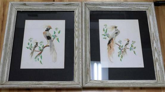 2 VINTAGE BRAZILLIAN FEATHER ART OF TROPICAL BIRDS