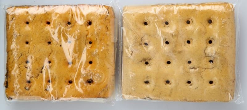 GOVERNMENT ISSUED CIVIL WAR HARDTACK