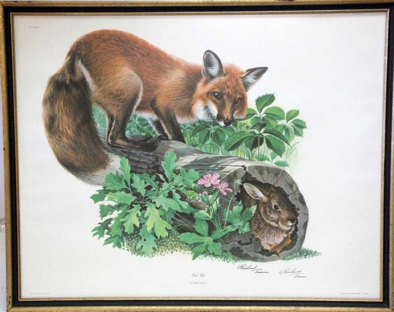 SIGNED RICHARD TIMM RED FOX PLATE 1 LITHO