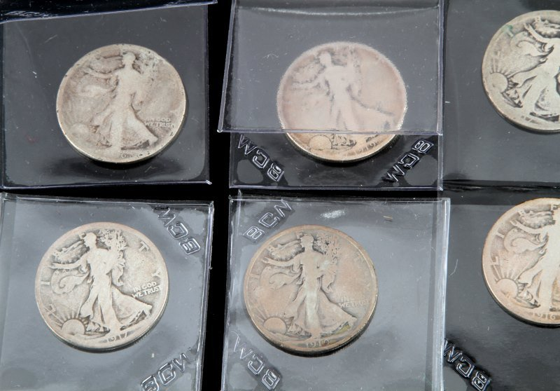 COLLECTION OF EARLY KEY DATE WALKING LIBERTY HALF - 4