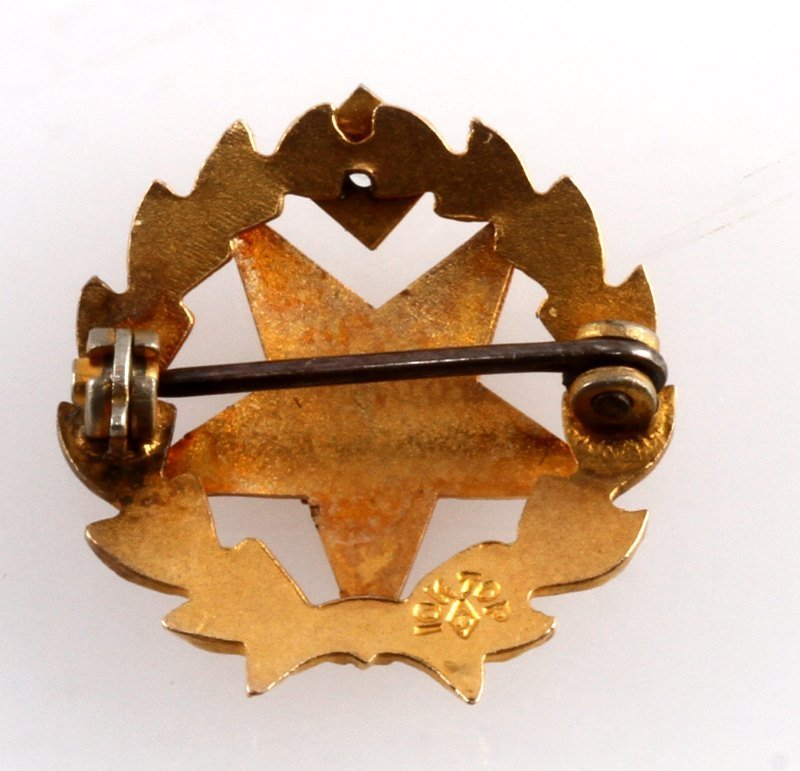 ORDER OF THE EASTERN STAR 10 KT GOLD PIN FATAL - 3