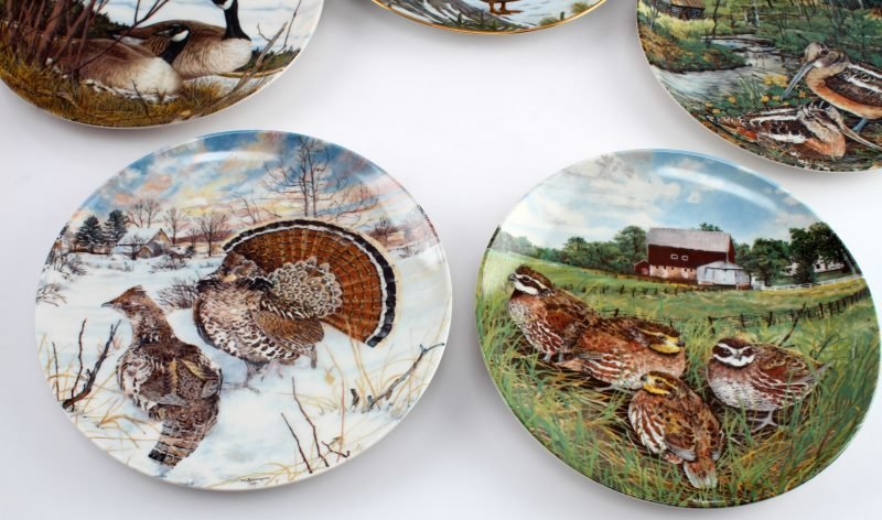 LOT OF 8 KNOWLES & DOMINION CHINA BIRD PLATES - 4
