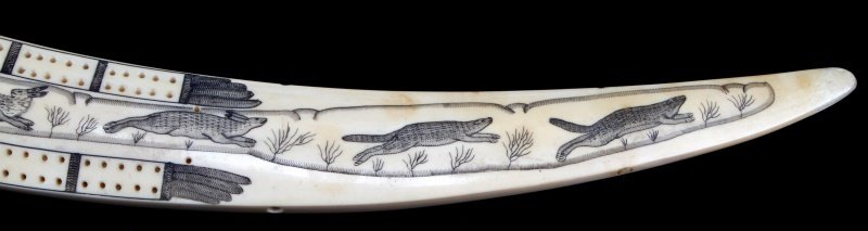 ANTIQUE WALRUS TUSK SCRIMSHAW CRIBBAGE BOARD - 3