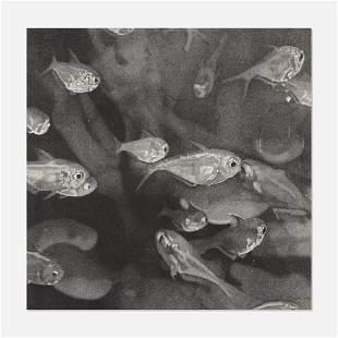 Wendy Meng, School of Fish