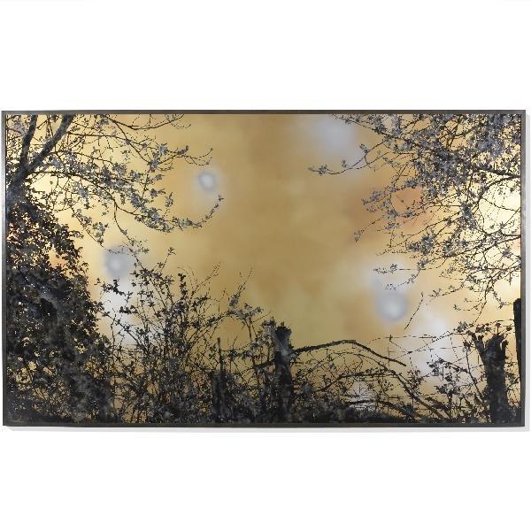 101: Stefan Sehler untitled