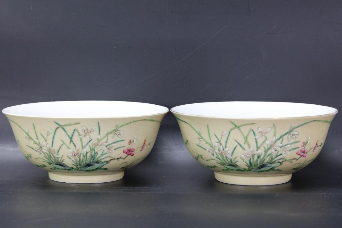 A Pair of Floral Famille Verte Bowls with DaoGuang Mark
