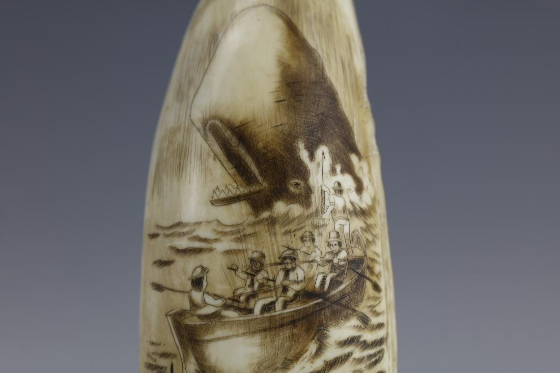 19th Century Scrimshaw Whale Tooth Moby Dick Hunting - 3
