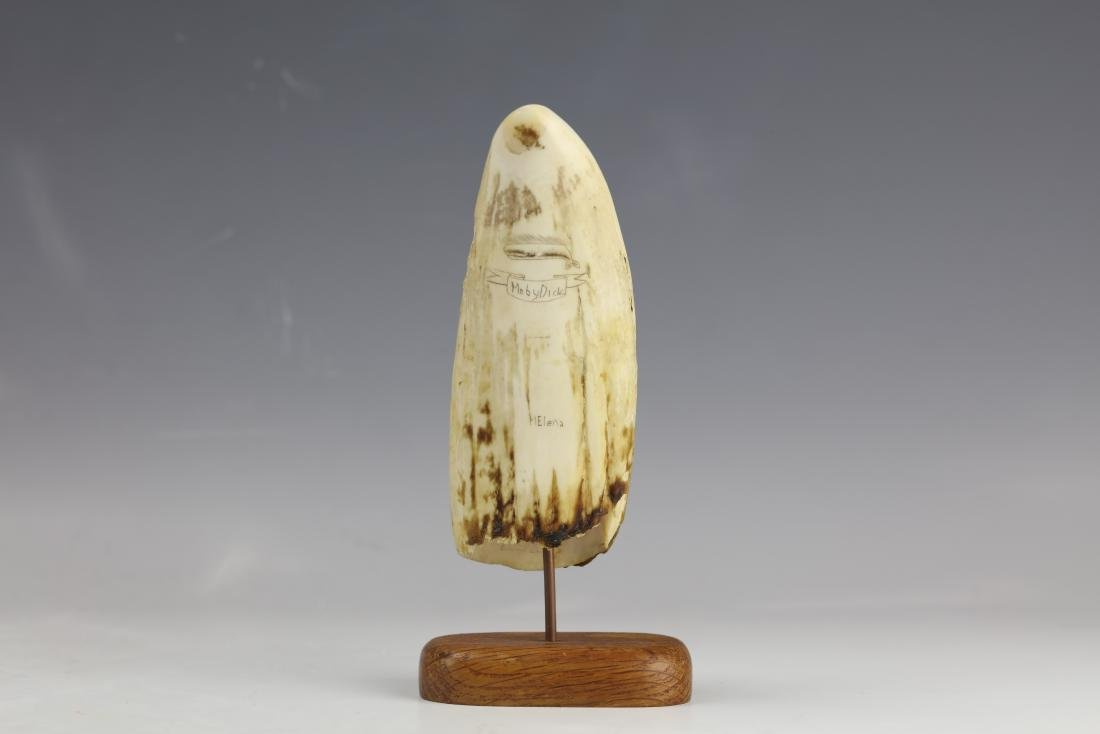 19th Century Scrimshaw Whale Tooth Moby Dick Hunting - 5