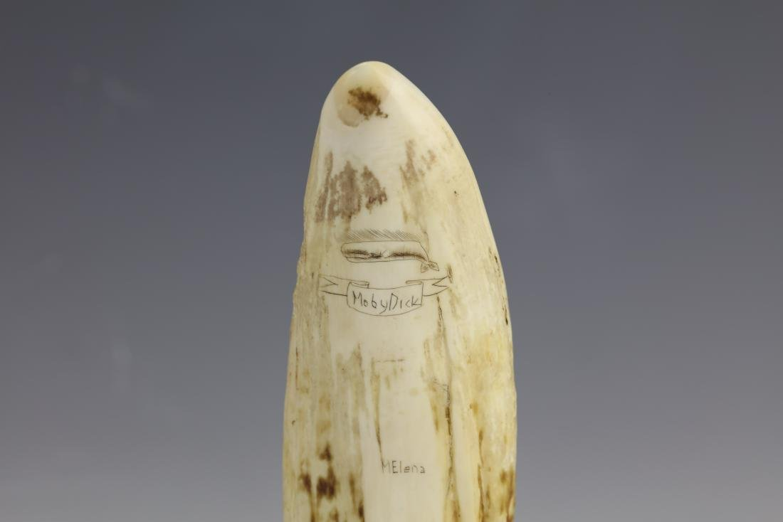 19th Century Scrimshaw Whale Tooth Moby Dick Hunting - 6