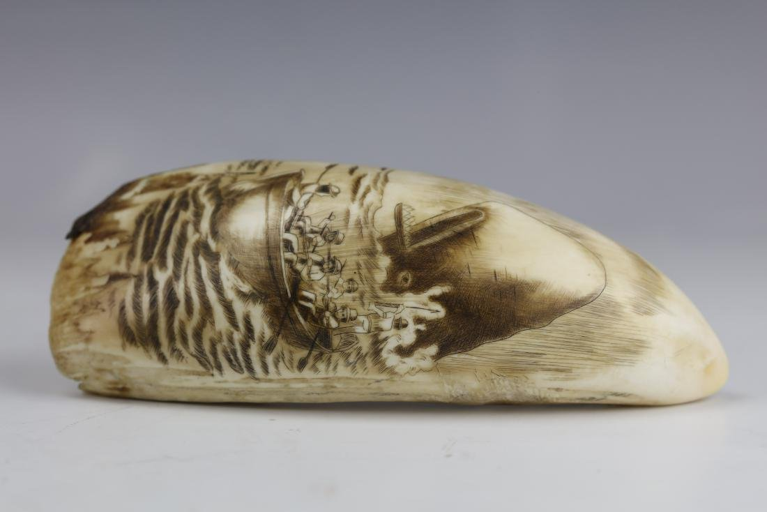 19th Century Scrimshaw Whale Tooth Moby Dick Hunting - 8