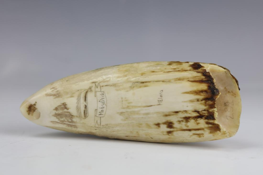 19th Century Scrimshaw Whale Tooth Moby Dick Hunting - 9